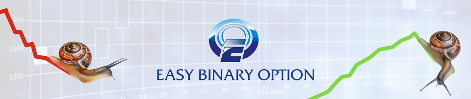 easybinary_header_960x202.jpg